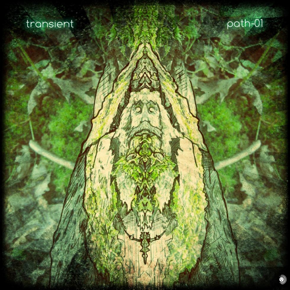 transient-path-01